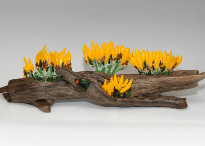 fused glass sunflowers on driftwood with dichroic bug by linda oeffling